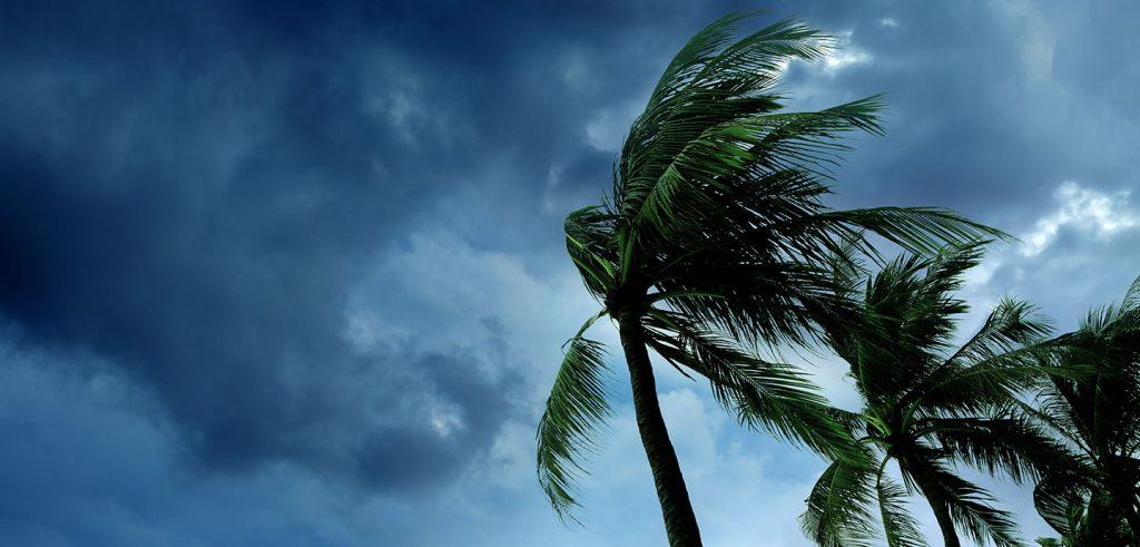 Hurricane Ida Storm damage