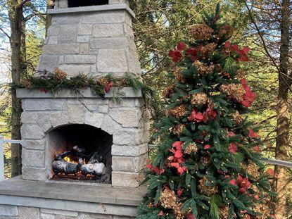 Fireplace Georgia