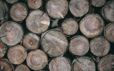 Leftover Firewood: 5 Uses for Extra Wood